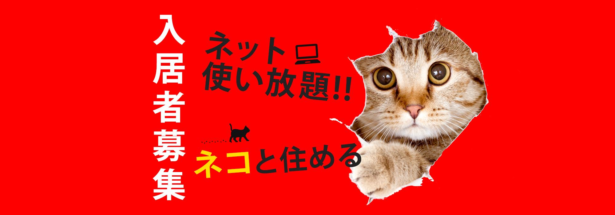 入居者募集 ネコと住める ネット使い放題